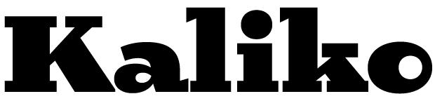 Birra™ display word